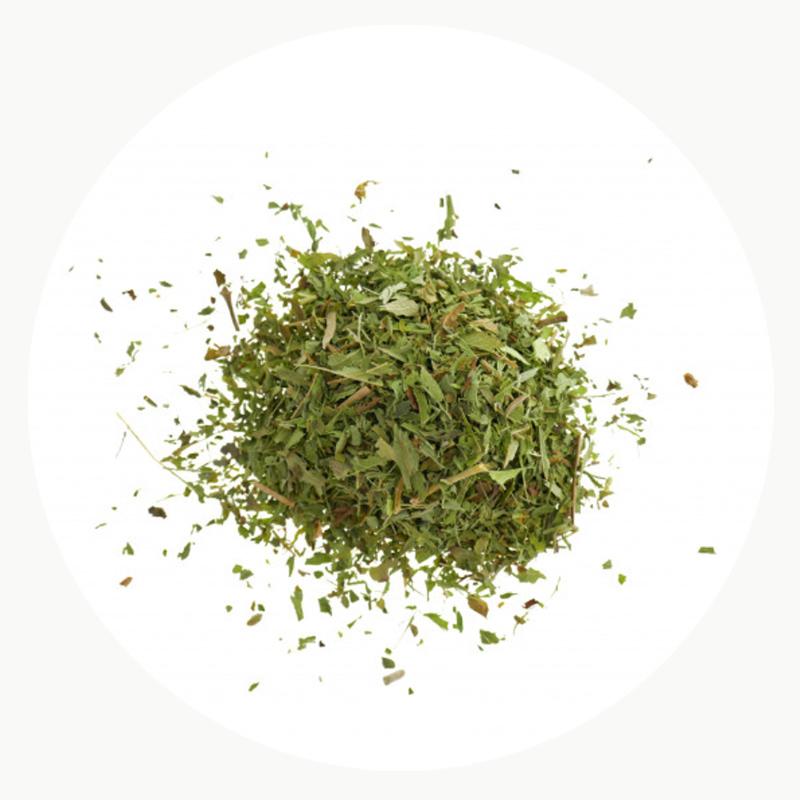 Stevia natural y orgánica