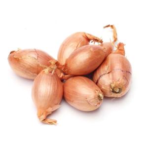 Cebolla chalota ecológica y fresca