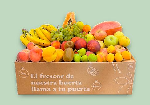 Cesta de fruta y verdura a domicilio - Comprar Fruta y verdura ecológica y de proximidad Frooty Online Barcelona
